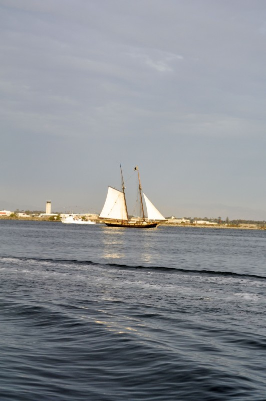 Shot of the Pilgrim leaving the harbor.